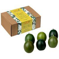 Toskana Duftkerzen Olive